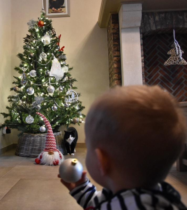kerstblooper