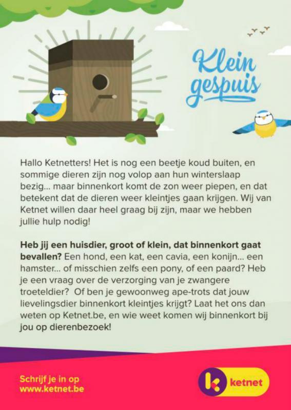 Flyer van Ketnet over nieuw programma Klein Gespuis